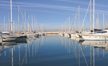 Bagno Balena Marina Di Pisa : Tappa a cala de medici della canoa polinesiana del u201ctoscana lungo