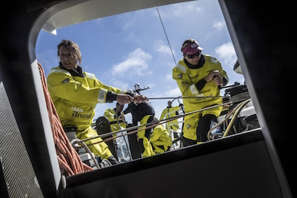 team brunel ingaggia due veterani
